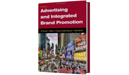 Test Bank for Advertising and Integrated Brand Promotion, 8th Edition by Thomas O'Guinn